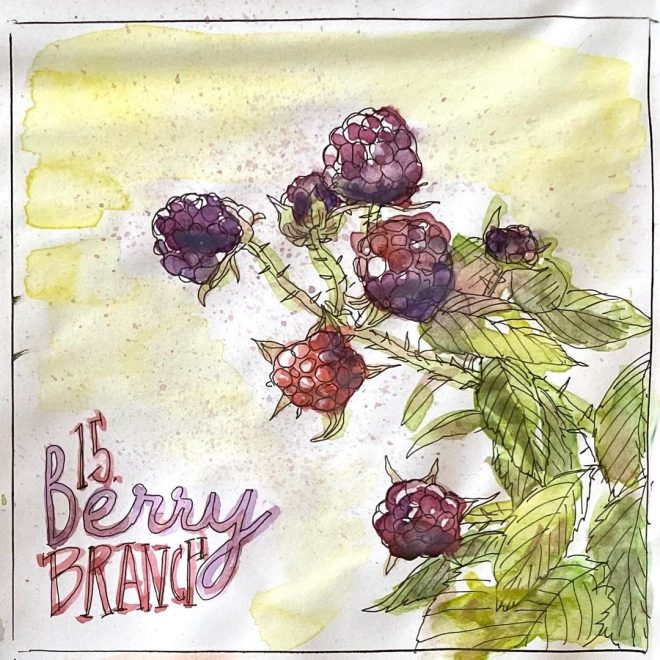 Inktober prompt: Berry Branch