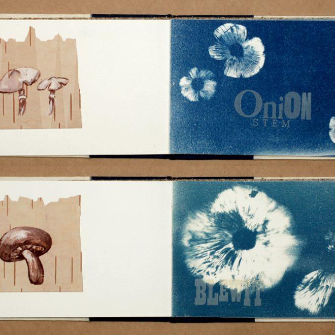 Artist Book: Gathered Specimens interior spreads