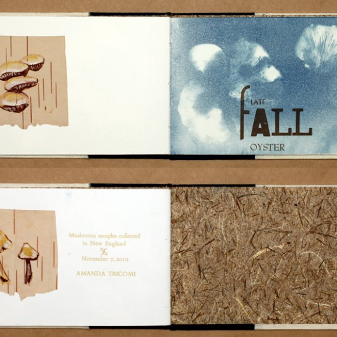 Artist Book: Gathered Specimens interior spreads and last page