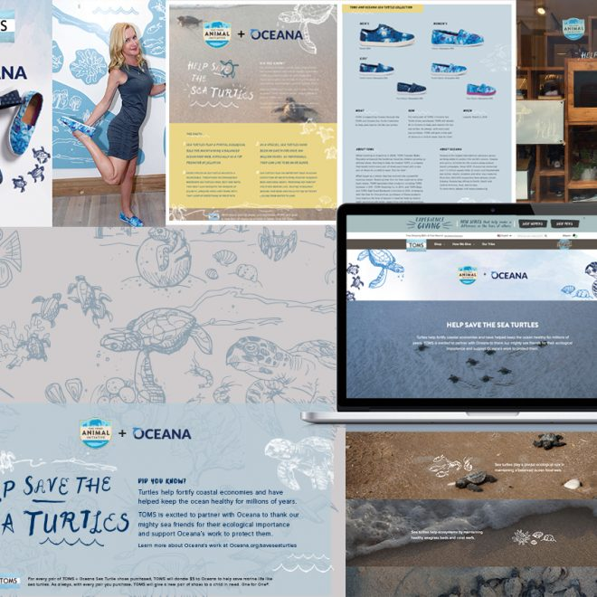 Oceana Partnership illustrations for marketing and in-store use