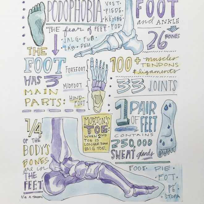 Foot Facts for a Podiatry Office