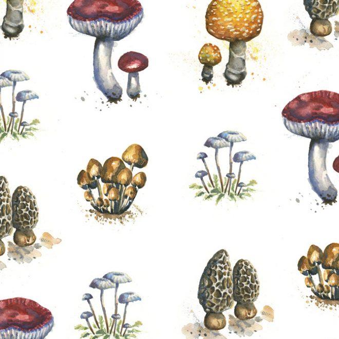 Repeat pattern of watercolor mushrooms